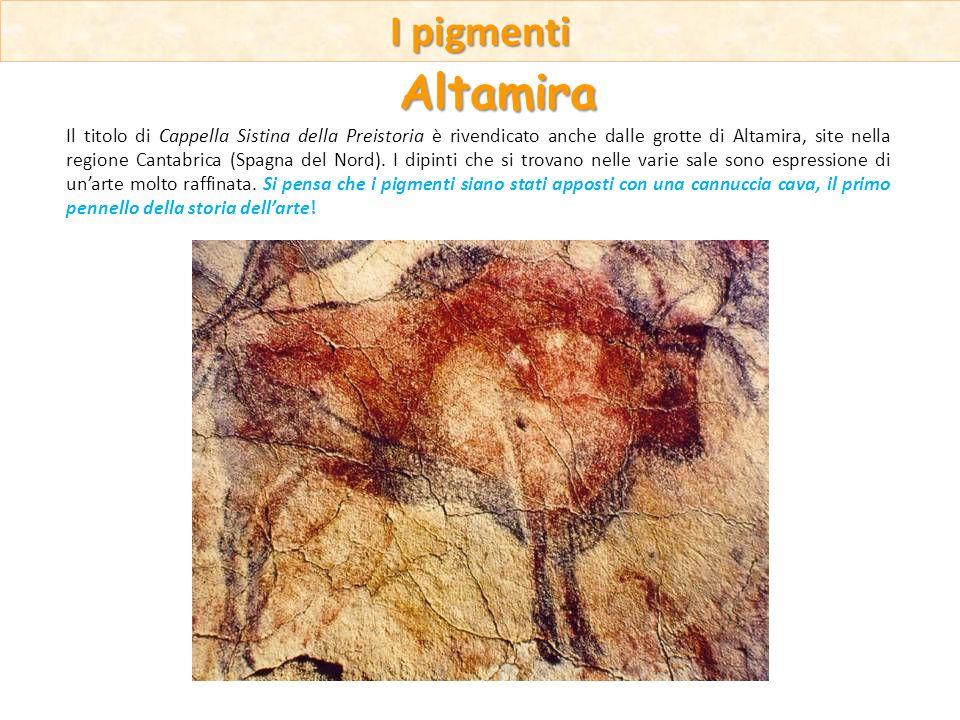 Il titolo di Cappella Sistina della Preistoria è rivendicato anche dalle grotte di Altamira, site nella regione Cantabrica (Spagna del Nord). I dipint
