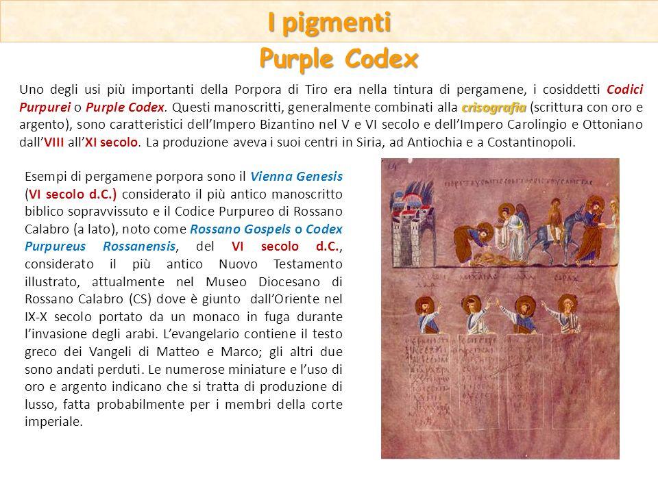 Esempi di pergamene porpora sono il Vienna Genesis (VI secolo d.C.) considerato il più antico manoscritto biblico sopravvissuto e il Codice Purpureo d