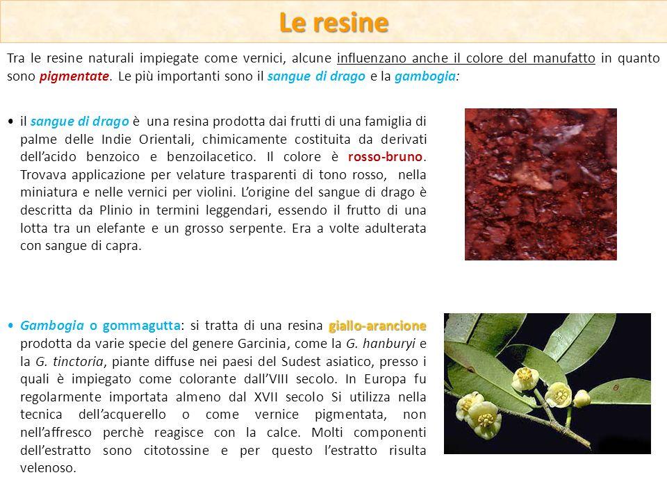 Tra le resine naturali impiegate come vernici, alcune influenzano anche il colore del manufatto in quanto sono pigmentate. Le più importanti sono il s