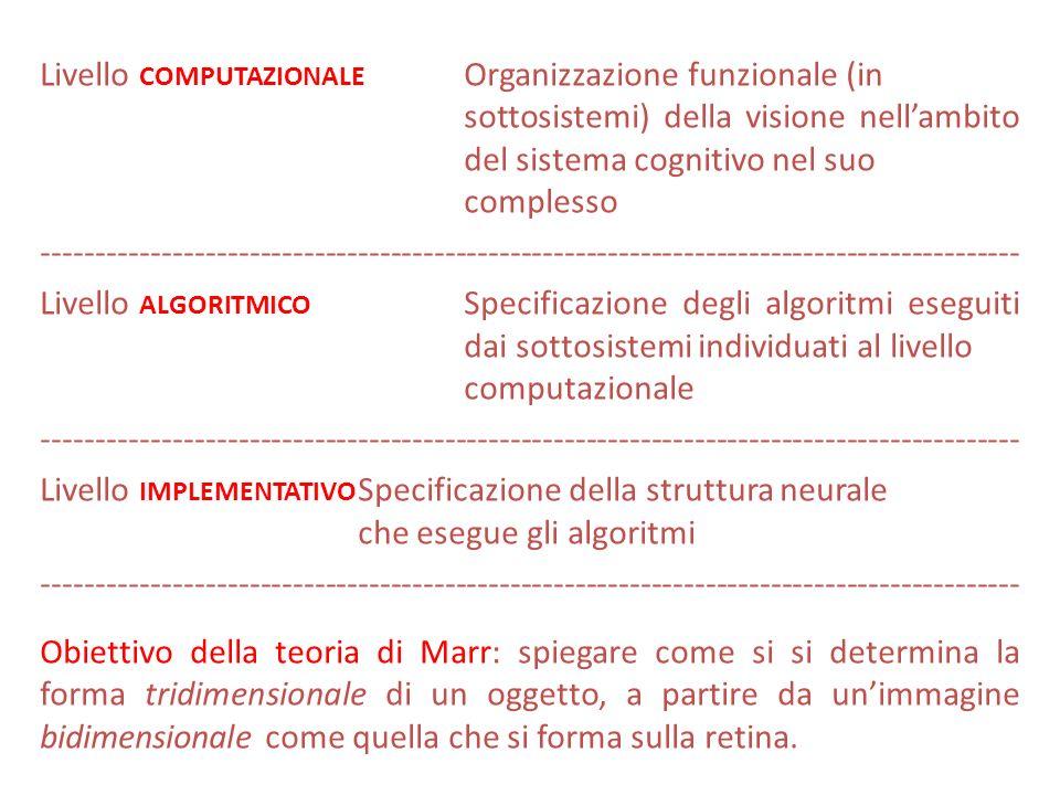 Livello COMPUTAZIONALE Organizzazione funzionale (in sottosistemi) della visione nellambito del sistema cognitivo nel suo complesso ------------------