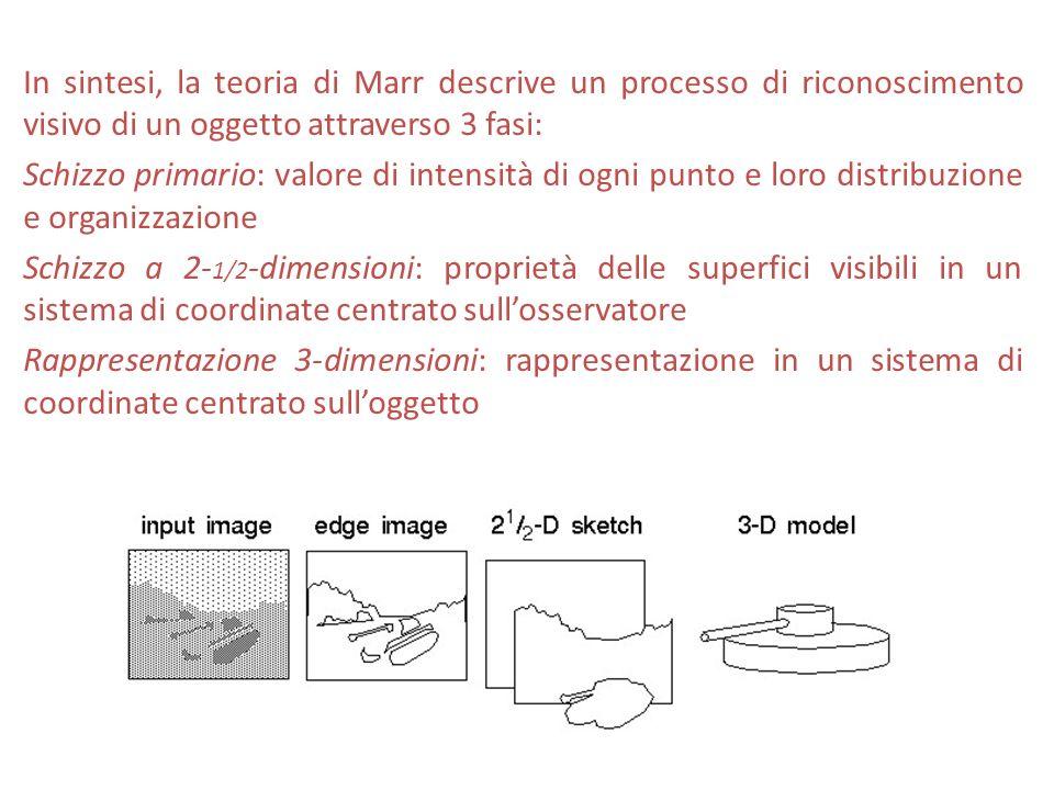 In sintesi, la teoria di Marr descrive un processo di riconoscimento visivo di un oggetto attraverso 3 fasi: Schizzo primario: valore di intensità di