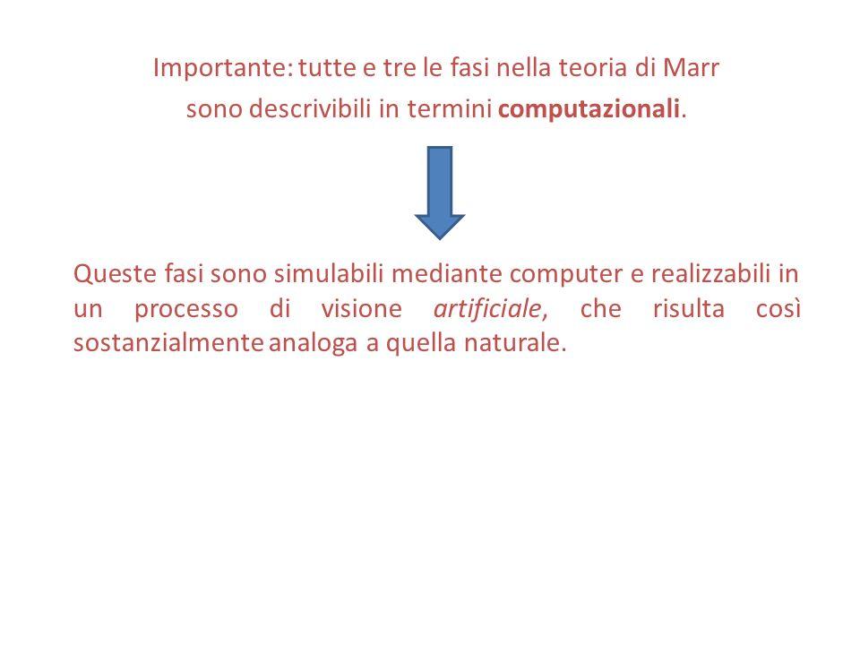 Importante: tutte e tre le fasi nella teoria di Marr sono descrivibili in termini computazionali. Queste fasi sono simulabili mediante computer e real
