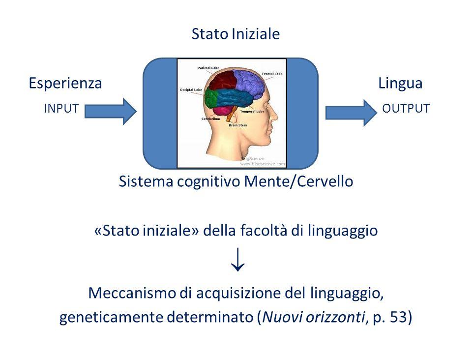 Stato Iniziale Esperienza Lingua INPUT OUTPUT Sistema cognitivo Mente/Cervello «Stato iniziale» della facoltà di linguaggio Meccanismo di acquisizione
