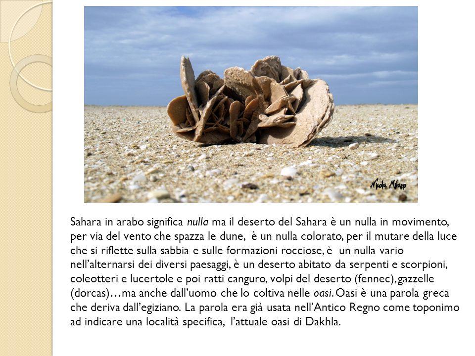 Sahara in arabo significa nulla ma il deserto del Sahara è un nulla in movimento, per via del vento che spazza le dune, è un nulla colorato, per il mutare della luce che si riflette sulla sabbia e sulle formazioni rocciose, è un nulla vario nellalternarsi dei diversi paesaggi, è un deserto abitato da serpenti e scorpioni, coleotteri e lucertole e poi ratti canguro, volpi del deserto (fennec), gazzelle (dorcas)…ma anche dalluomo che lo coltiva nelle oasi.