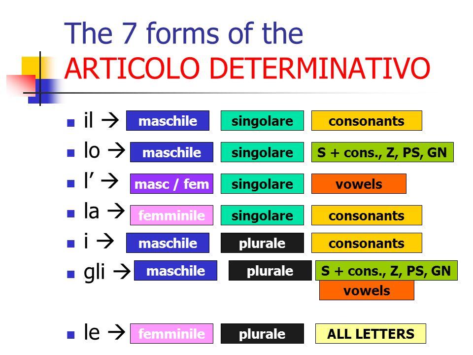 06/10/2009 The 7 forms of the ARTICOLO DETERMINATIVO il lo l la i gli le maschilesingolareconsonants maschilesingolareS + cons., Z, PS, GN masc / fems