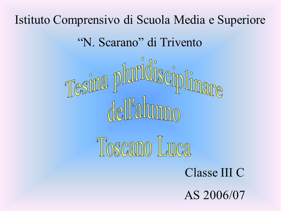 Classe III C AS 2006/07 Istituto Comprensivo di Scuola Media e Superiore N. Scarano di Trivento