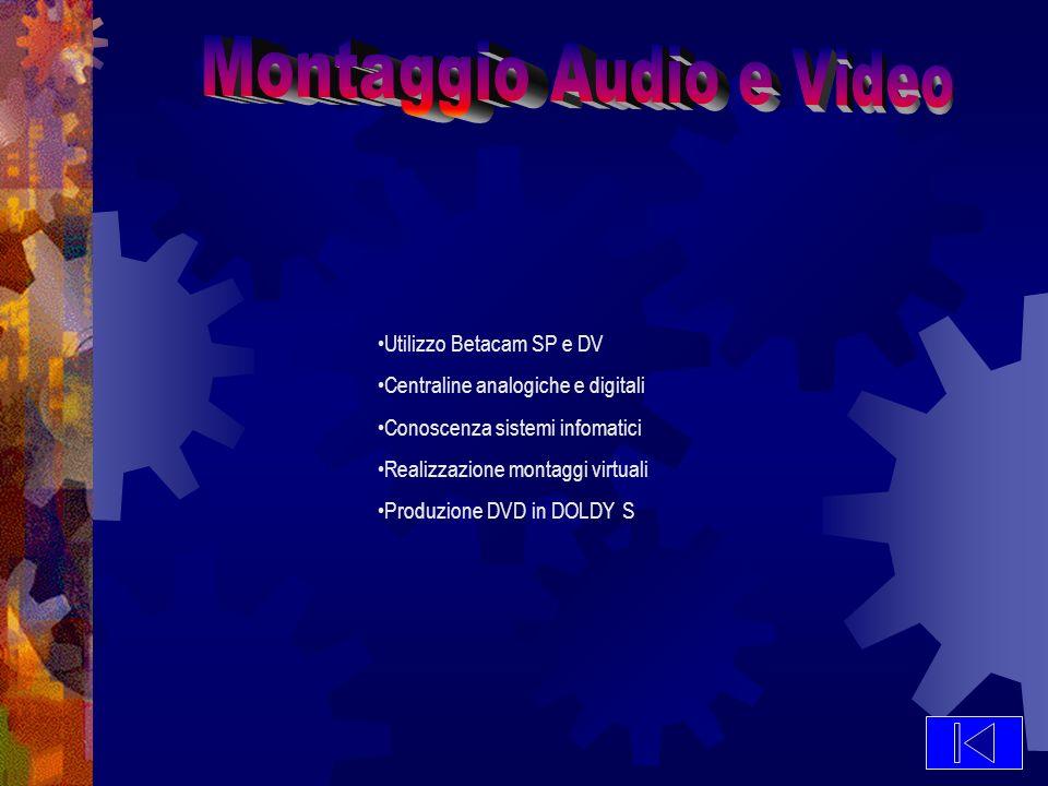 Utilizzo Betacam SP e DV Centraline analogiche e digitali Conoscenza sistemi infomatici Realizzazione montaggi virtuali Produzione DVD in DOLDY S