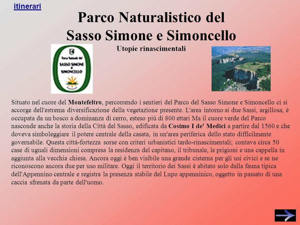 Parco Naturalistico del Sasso Simone e Simoncello Utopie rinascimentali Situato nel cuore del Montefeltro, percorrendo i sentieri del Parco del Sasso Simone e Simoncello ci si accorge dell estrema diversificazione della vegetazione presente.