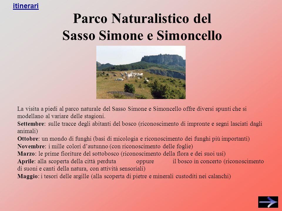 La visita a piedi al parco naturale del Sasso Simone e Simoncello offre diversi spunti che si modellano al variare delle stagioni.