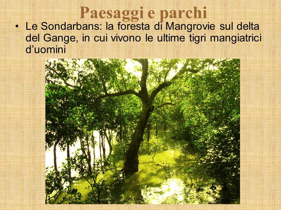 Paesaggi e parchi Le Sondarbans: la foresta di Mangrovie sul delta del Gange, in cui vivono le ultime tigri mangiatrici duomini