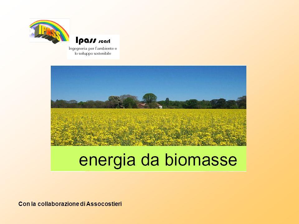 Valutazioni economiche Gli impianti ad olio vegetale possono rappresentare una reale opportunità di investimento per gli operatori finanziari in quanto: possono contribuire al raggiungimento della quota pari al 22% dellelettricità prodotta, su base comunitaria, da fonti energetiche rinnovabili entro il 2010; possono contribuire alla crescita della filiera dellagricoltura «no food» che rappresenta senzaltro una grande opportunità per la riconversione produttiva del settore agricolo.