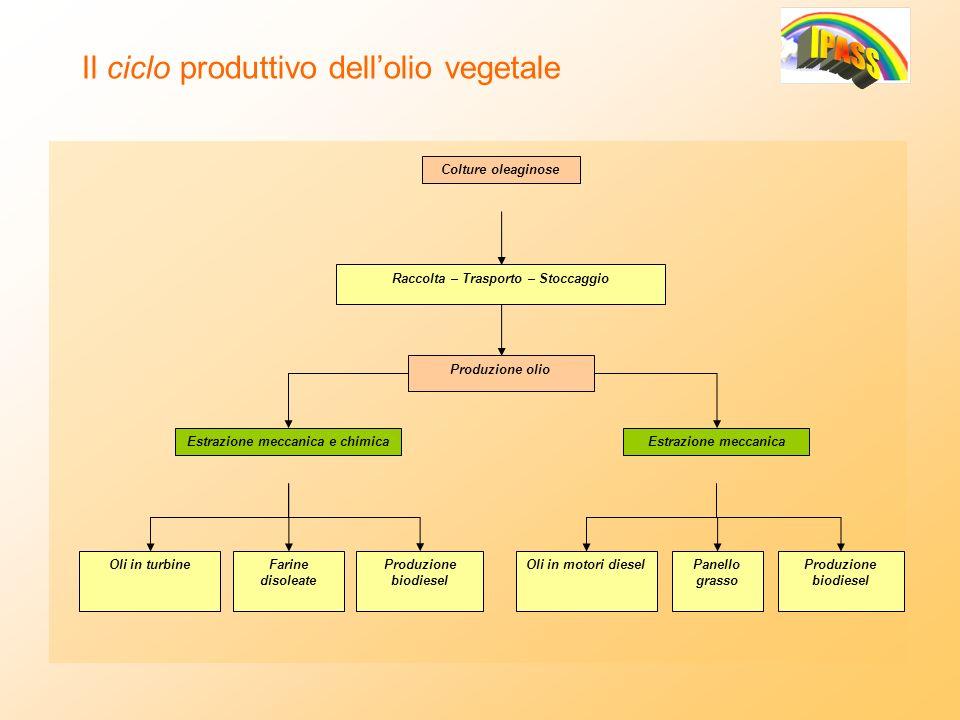Il ciclo produttivo dellolio vegetale Colture oleaginose Raccolta – Trasporto – Stoccaggio Produzione olio Oli in turbineFarine disoleate Produzione b