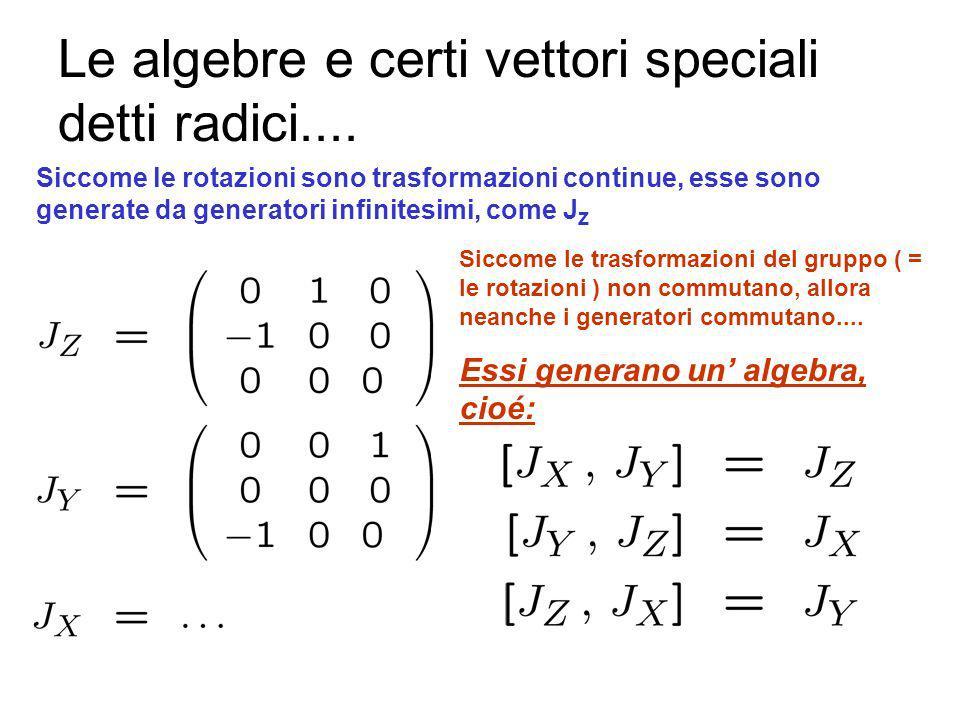 Le matrici di rotazione ed i generatori Un vettore é identificato dalle sue componenti lungo gli assi X, Y, Z Applichiamo una rotazione La rotazione è rappresentata da una matrice
