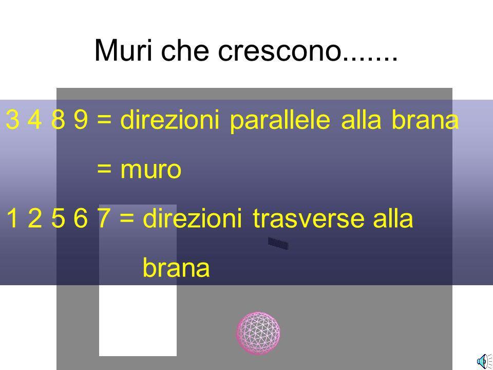 Un esempio esplicito Ma cé anche una F5 che corrisponde alla presenza di una D3 brana spaziale La metrica é: Questo campo é associato ad una radice ed abbiamo un muro!!!.