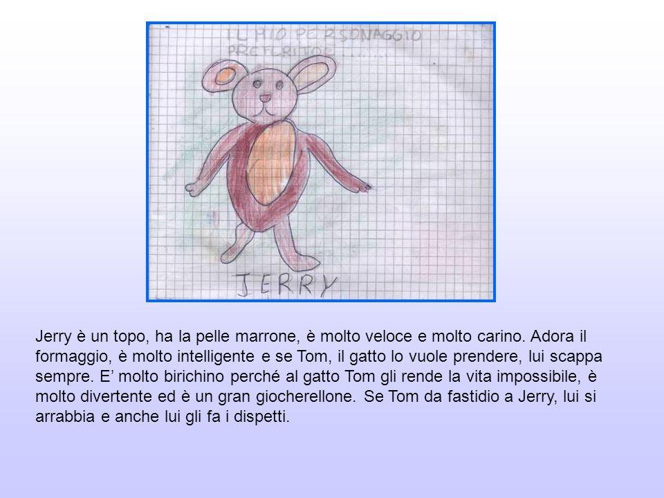 Jerry è un topo, ha la pelle marrone, è molto veloce e molto carino. Adora il formaggio, è molto intelligente e se Tom, il gatto lo vuole prendere, lu
