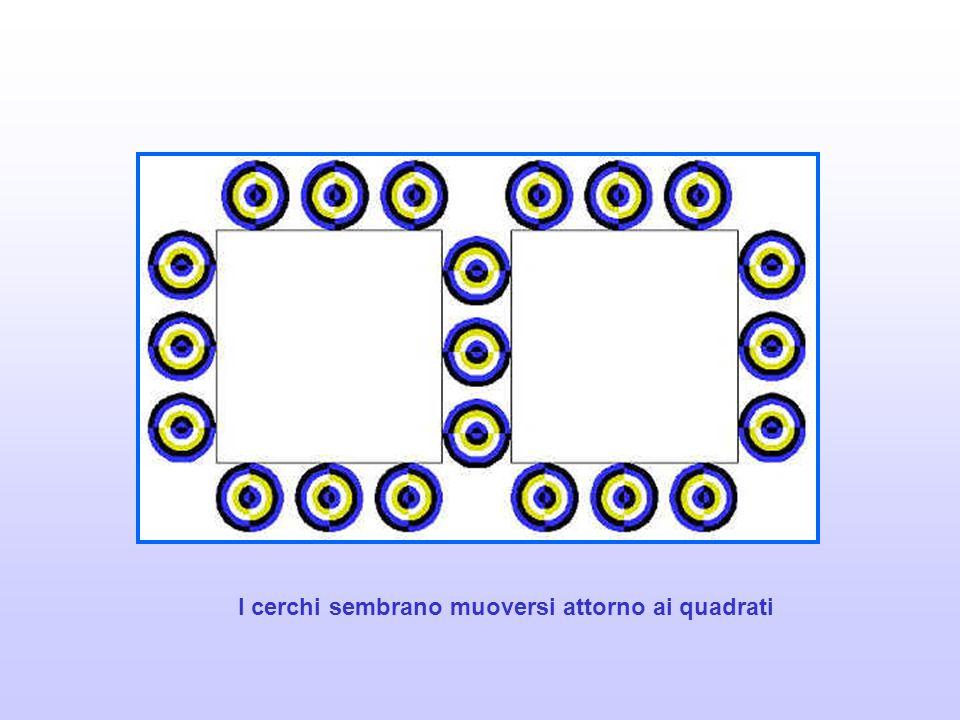 I cerchi sembrano muoversi attorno ai quadrati