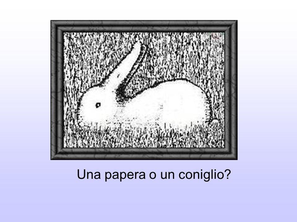Una papera o un coniglio?