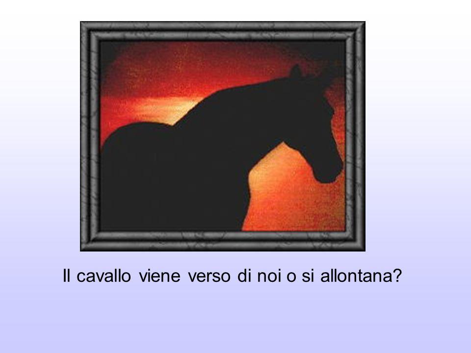 Il cavallo viene verso di noi o si allontana?