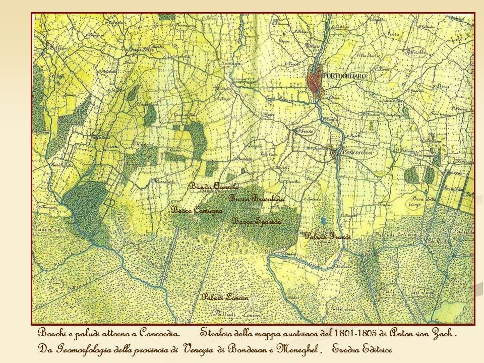Boschi e paludi attorno a Concordia. Stralcio della mappa austriaca del 1801-1805 di Anton von Zach. Da Geomorfologia della provincia di Venezia di Bo