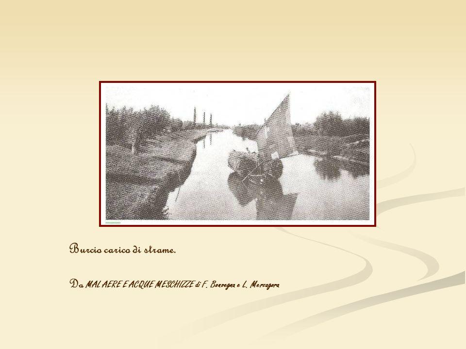 Burcio carico di strame. Da MAL AERE E ACQUE MESCHIZZE di F. Bonvegna e L. Merzagora
