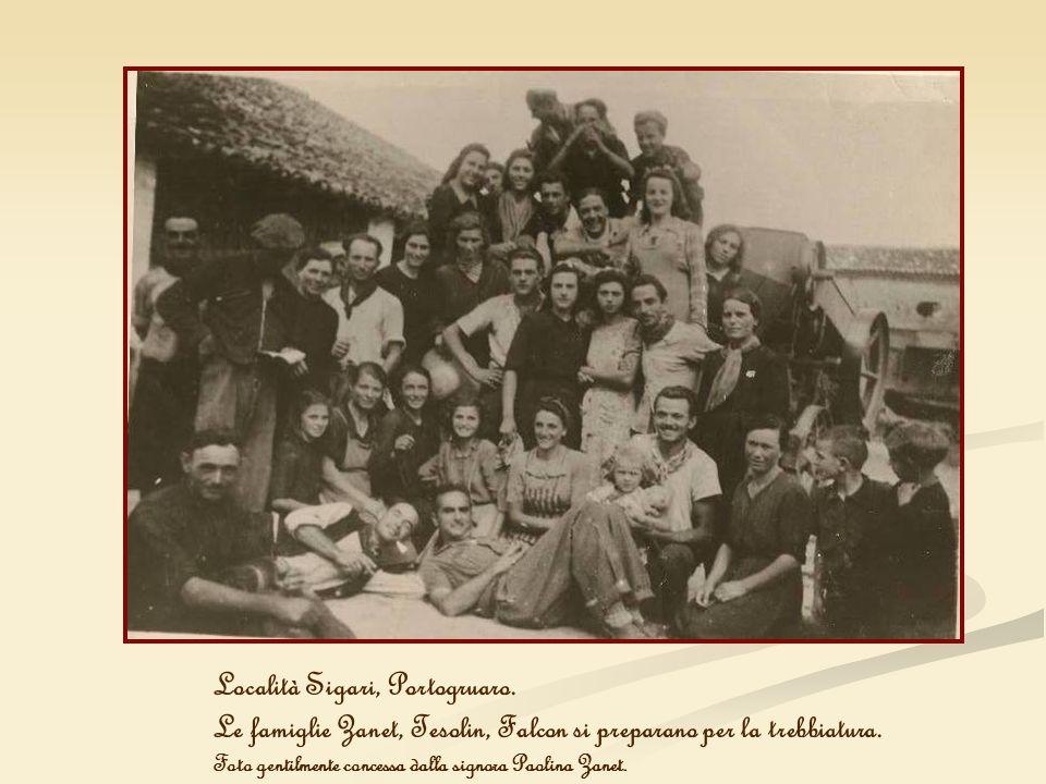 Località Sigari, Portogruaro. Le famiglie Zanet, Tesolin, Falcon si preparano per la trebbiatura. Foto gentilmente concessa dalla signora Paolina Zane