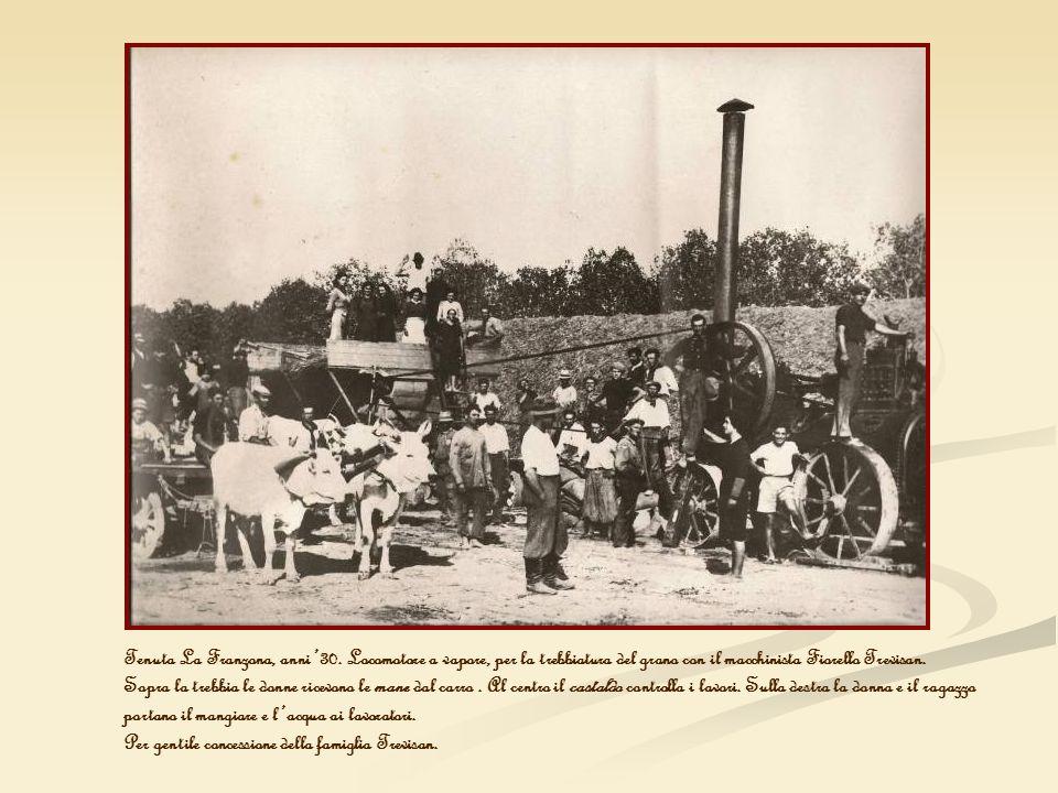 Tenuta La Franzona, anni 30. Locomotore a vapore, per la trebbiatura del grano con il macchinista Fiorello Trevisan. Sopra la trebbia le donne ricevon