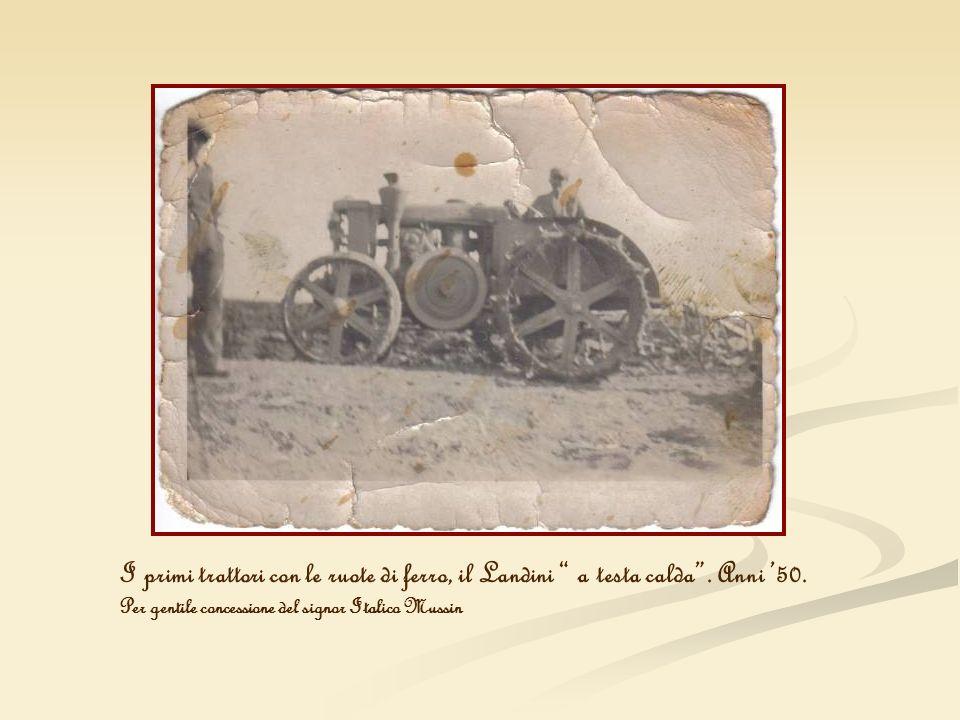 I primi trattori con le ruote di ferro, il Landini a testa calda. Anni 50. Per gentile concessione del signor Italico Mussin