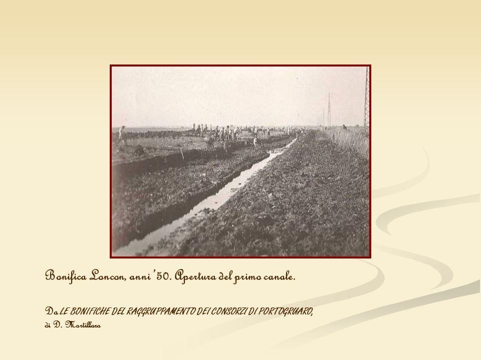 Bonifica Loncon, anni 50. Apertura del primo canale. Da LE BONIFICHE DEL RAGGRUPPAMENTO DEI CONSORZI DI PORTOGRUARO, di D. Mortillaro