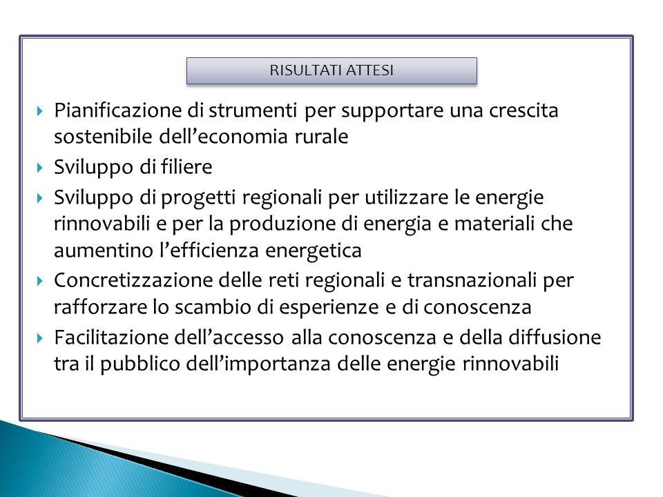 Pianificazione di strumenti per supportare una crescita sostenibile delleconomia rurale Sviluppo di filiere Sviluppo di progetti regionali per utilizzare le energie rinnovabili e per la produzione di energia e materiali che aumentino lefficienza energetica Concretizzazione delle reti regionali e transnazionali per rafforzare lo scambio di esperienze e di conoscenza Facilitazione dellaccesso alla conoscenza e della diffusione tra il pubblico dellimportanza delle energie rinnovabili RISULTATI ATTESI