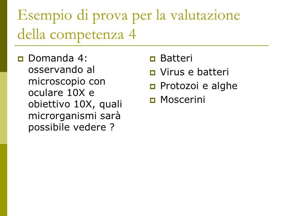 Esempio di prova per la valutazione della competenza 4 Domanda 4: osservando al microscopio con oculare 10X e obiettivo 10X, quali microrganismi sarà