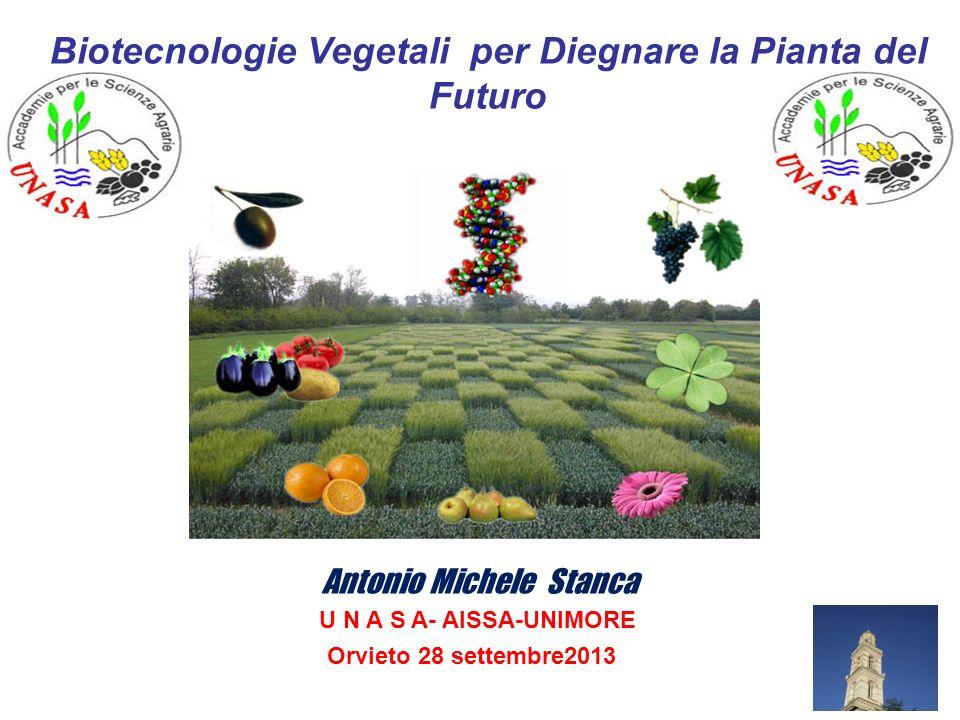 Biotecnologie Vegetali per Diegnare la Pianta del Futuro Antonio Michele Stanca U N A S A- AISSA-UNIMORE Orvieto 28 settembre2013