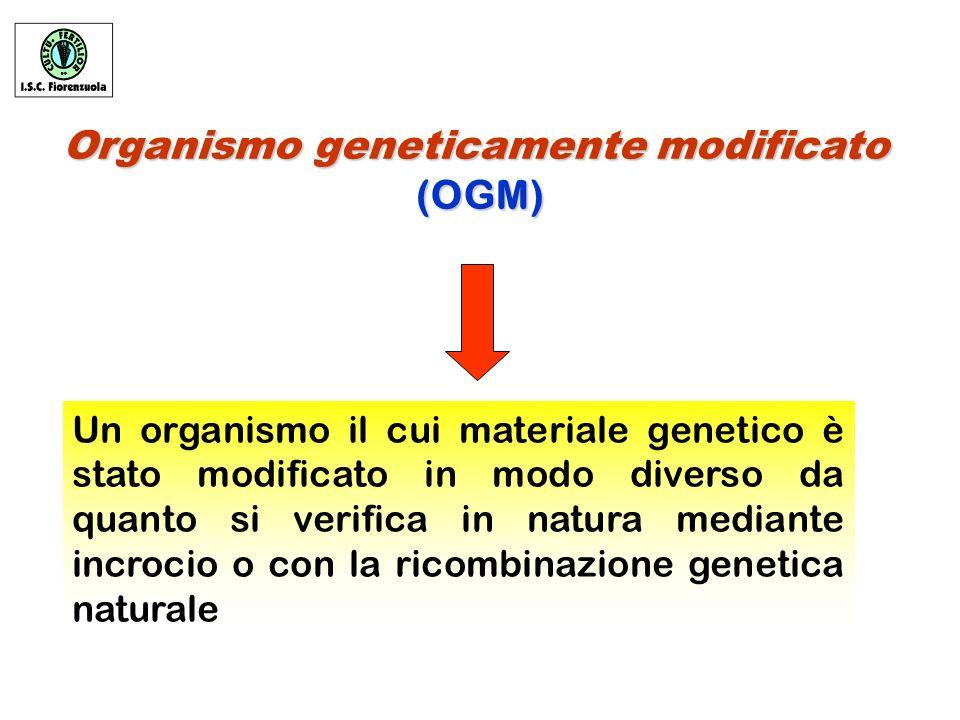 Organismo geneticamente modificato (OGM) (OGM) Un organismo il cui materiale genetico è stato modificato in modo diverso da quanto si verifica in natura mediante incrocio o con la ricombinazione genetica naturale