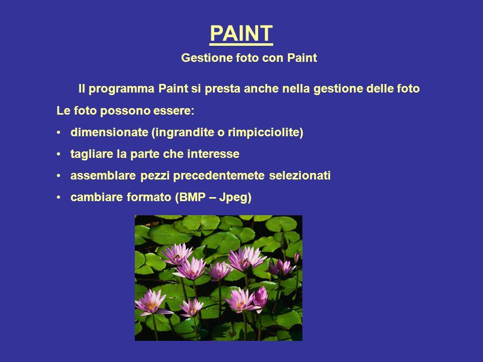 PAINT Gestione foto con Paint Il programma Paint si presta anche nella gestione delle foto Le foto possono essere: dimensionate (ingrandite o rimpicci