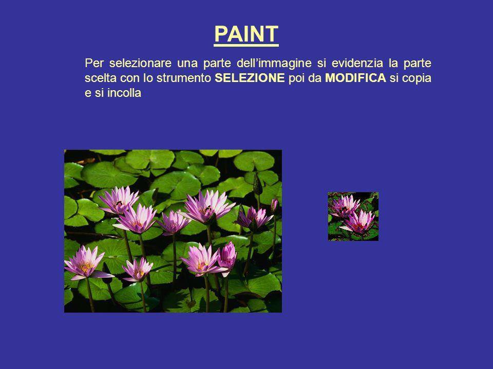 PAINT Per selezionare una parte dellimmagine si evidenzia la parte scelta con lo strumento SELEZIONE poi da MODIFICA si copia e si incolla