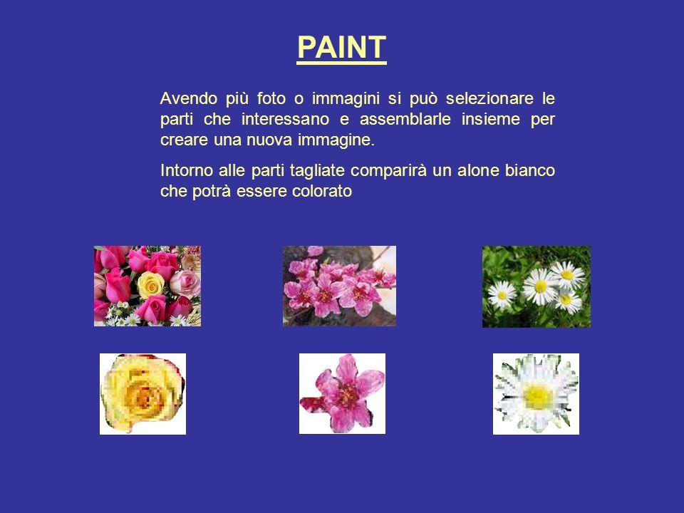 PAINT Avendo più foto o immagini si può selezionare le parti che interessano e assemblarle insieme per creare una nuova immagine. Intorno alle parti t