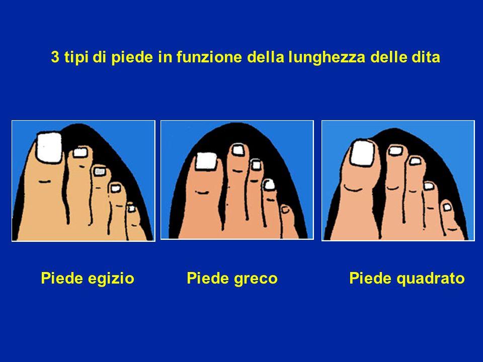 3 tipi di piede in funzione della lunghezza delle dita Piede egizio Piede greco Piede quadrato