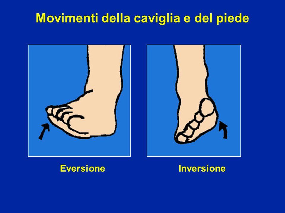 Movimenti della caviglia e del piede EversioneInversione