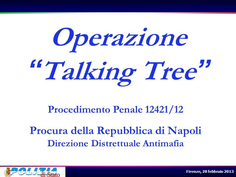 Firenze, 28 febbraio 2013 I servizi sul territorio Lindagine ha richiesto il costante impiego del personale sul territorio per i servizi di osservazione, controllo e pedinamento