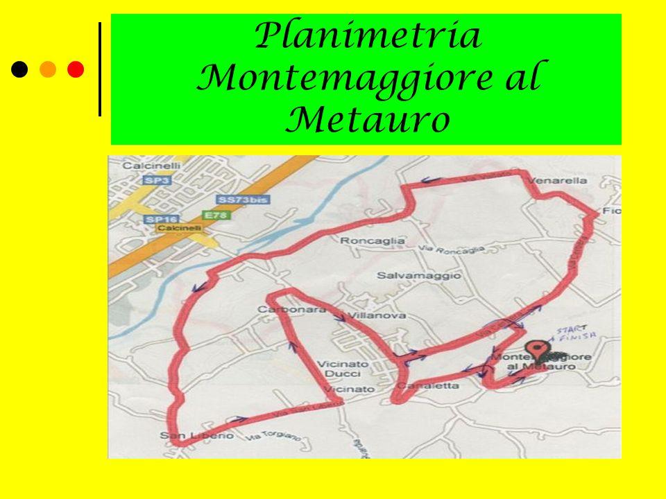 Planimetria Montemaggiore al Metauro