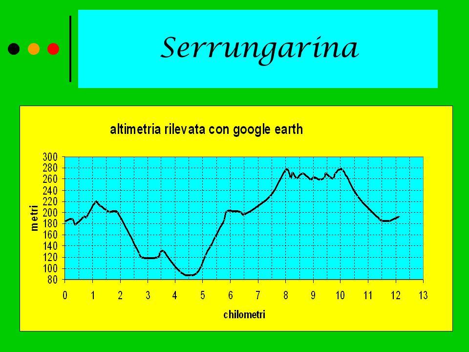 Serrungarina