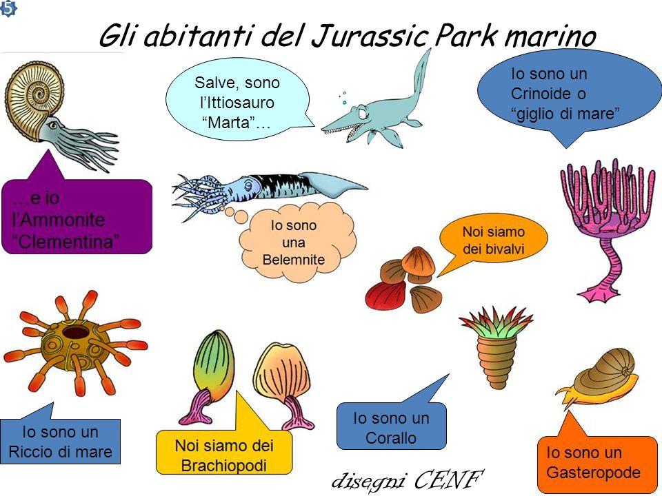 Le trilobiti Le trilobiti furono tra i dominatori dei mari dellera primaria o paleozoica. Si estinsero 250 milioni di anni fa, probabilmente a causa d