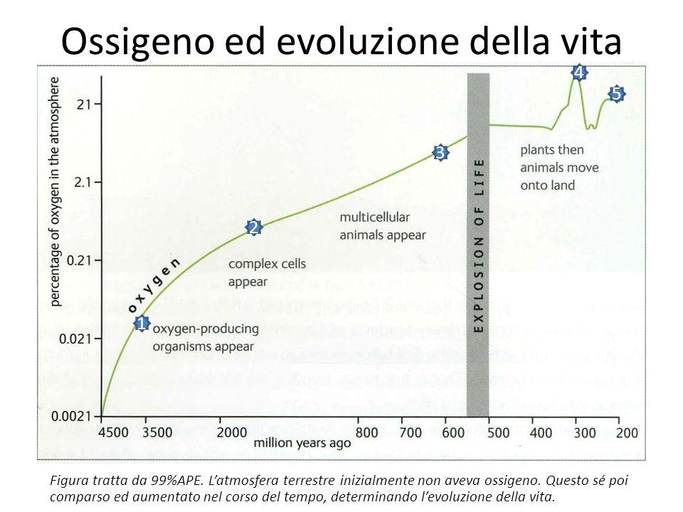 Ossigeno ed evoluzione della vita 1 2 3 4 5 Figura tratta da 99%APE.