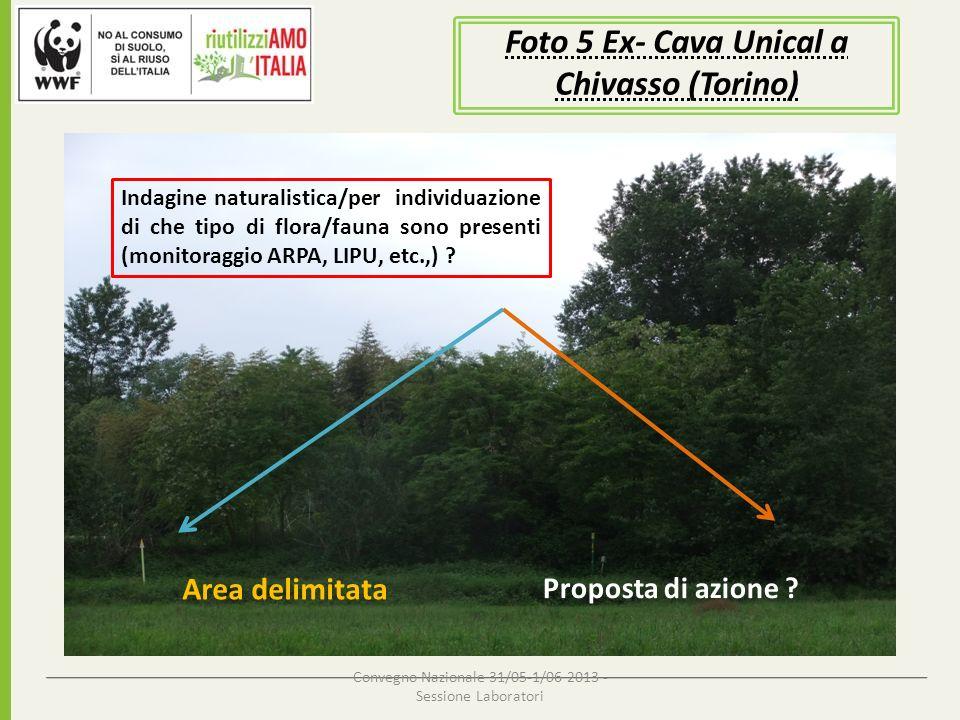 Convegno Nazionale 31/05-1/06 2013 - Sessione Laboratori Foto 5 Ex- Cava Unical a Chivasso (Torino) Area delimitata Indagine naturalistica/per individ