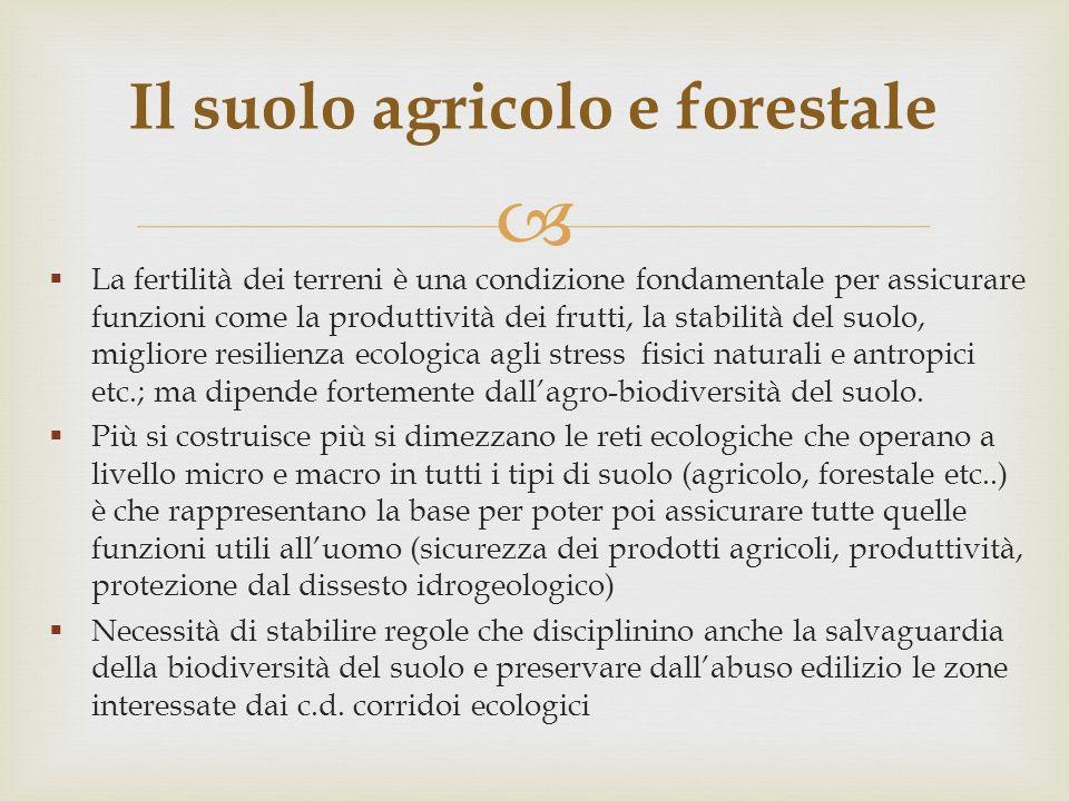 La fertilità dei terreni è una condizione fondamentale per assicurare funzioni come la produttività dei frutti, la stabilità del suolo, migliore resil