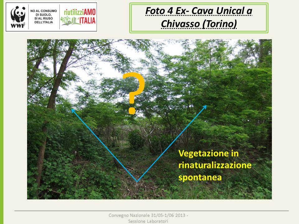 Convegno Nazionale 31/05-1/06 2013 - Sessione Laboratori Foto 5 Ex- Cava Unical a Chivasso (Torino) Area delimitata Indagine naturalistica/per individuazione di che tipo di flora/fauna sono presenti (monitoraggio ARPA, LIPU, etc.,) .