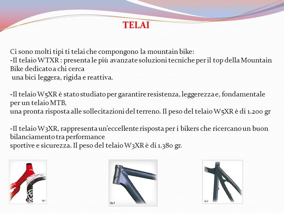 TELAI Ci sono molti tipi ti telai che compongono la mountain bike: -Il telaio WTXR : presenta le più avanzate soluzioni tecniche per il top della Moun