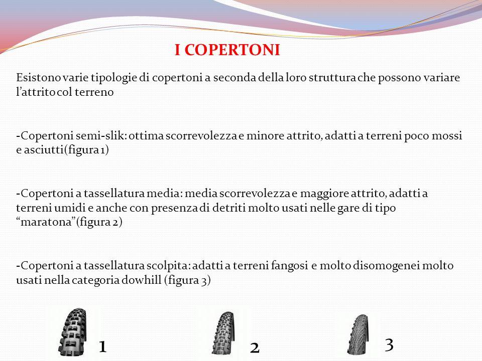 I COPERTONI Esistono varie tipologie di copertoni a seconda della loro struttura che possono variare lattrito col terreno -Copertoni semi-slik: ottima
