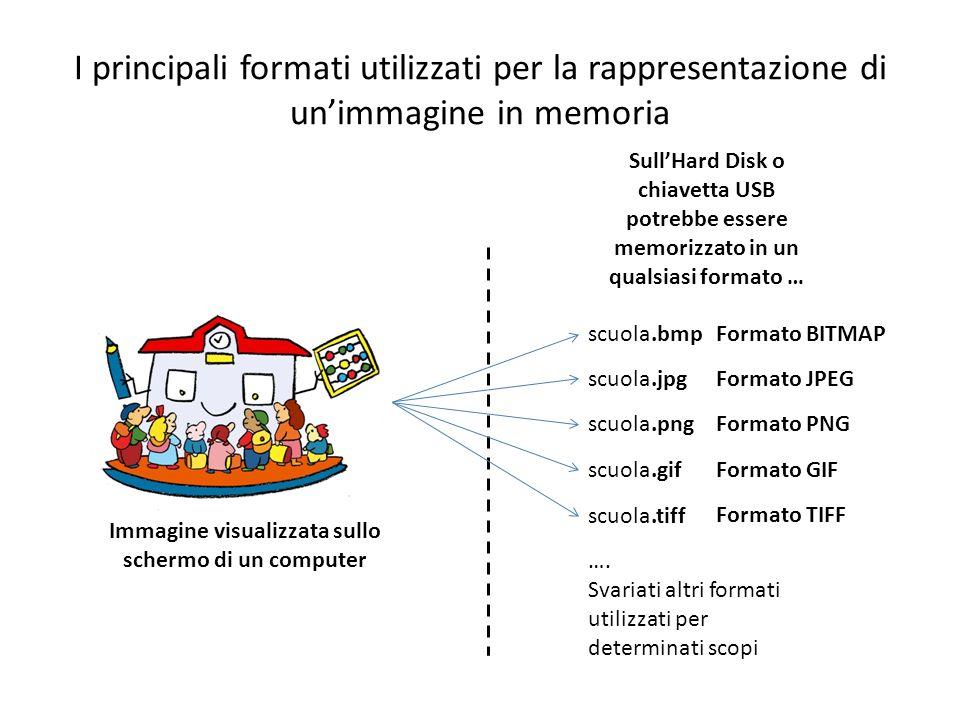 I principali formati utilizzati per la rappresentazione di unimmagine in memoria Immagine visualizzata sullo schermo di un computer SullHard Disk o ch