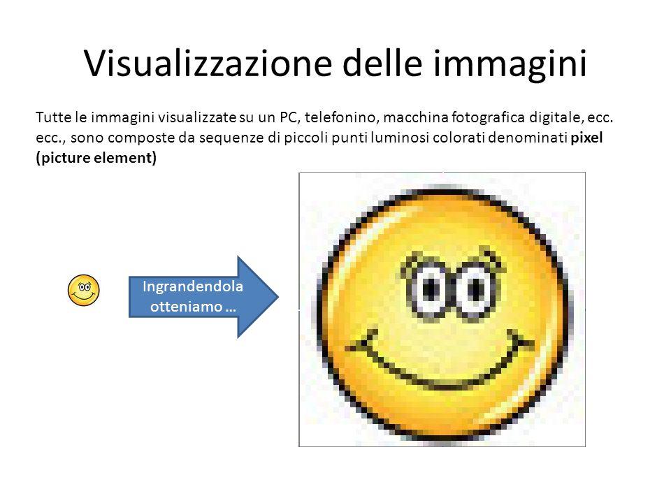 Visualizzazione delle immagini Tutte le immagini visualizzate su un PC, telefonino, macchina fotografica digitale, ecc. ecc., sono composte da sequenz