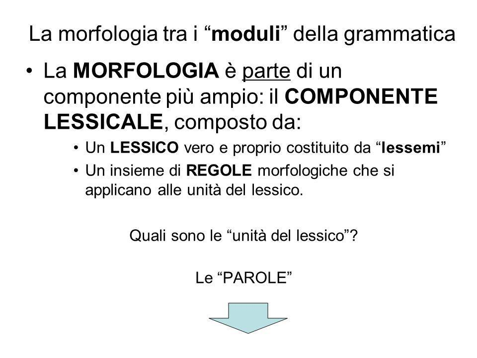 La nozione di PAROLA Un parlante nativo ha intuizioni corrette su cosa siano le parole, i lessemi, e le sa identificare in un discorso.